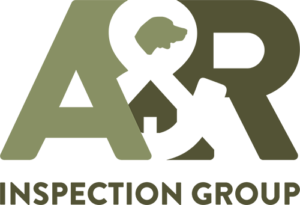 A&R Inspection Group logo